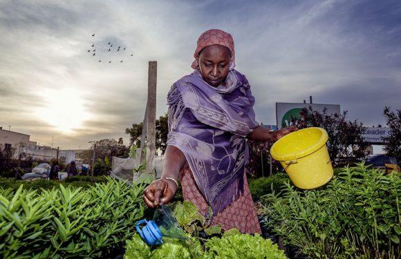 Aiuti allo sviluppo: solo 5 Paesi mantengono impegni