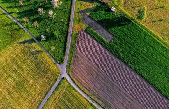 Consumo di suolo, persi 52 chilometri quadrati nel 2017