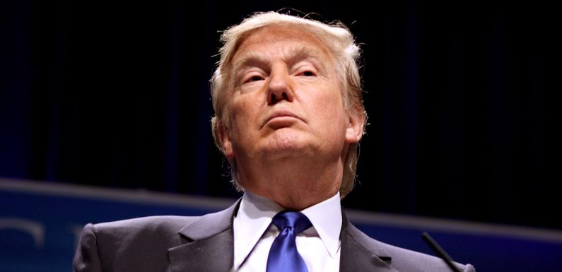 Donald Trump, l'immagine sguaiata del leader