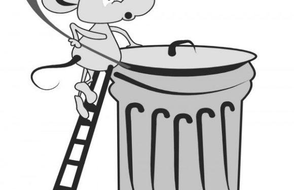 Dieci cose da sapere sul nuovo appalto dei rifiuti a Catania