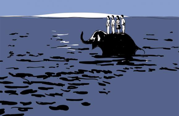 Elefante di mare