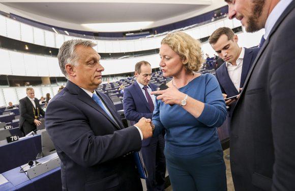Difendere i valori europei, oggi. Intervista a Judith Sargentini