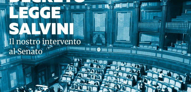 DL Salvini. Il testo della nostra audizione al Senato