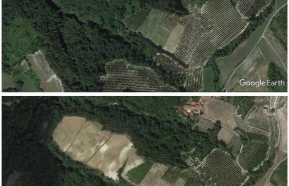Foreste, aree agricole e cemento. Così l'Italia cambia volto