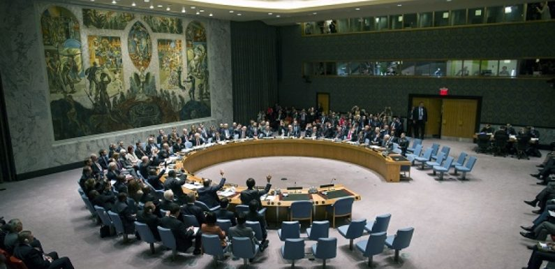 Onu, riconoscimento Palestina al CdS
