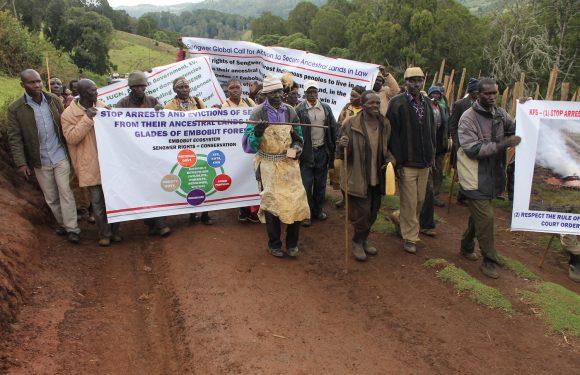 Difensori dei diritti umani e dell'ambiente: 321 vittime nel 2018