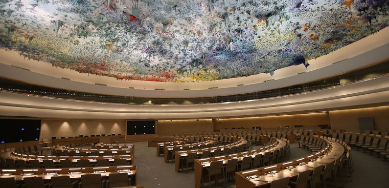 Un Consiglio per i diritti umani