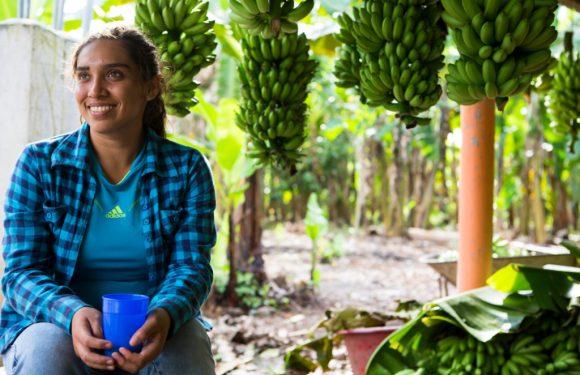L'impegno delle donne per la transizione ecologica e un commercio più equo