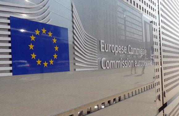 """Gli attivisti eritrei denunciano la Ue: """"Finanzia il lavoro forzato"""""""