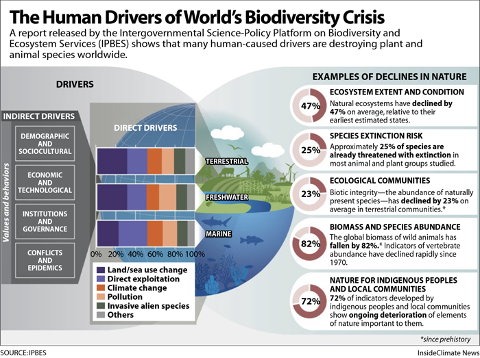 cambiamento climatico, biodiversità, estinzione, terra, onu