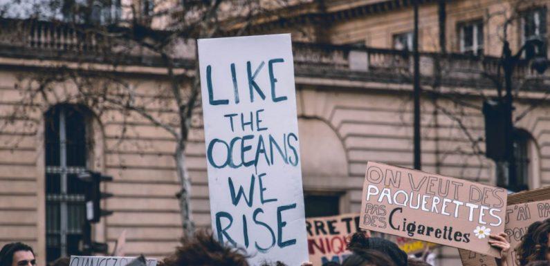 Per i negazionisti della questione climatica le parole di Greta Thunberg sono schiaffi. Meritati