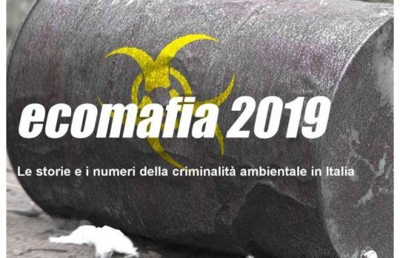 Criminalità ambientale in Italia, una priorità reale