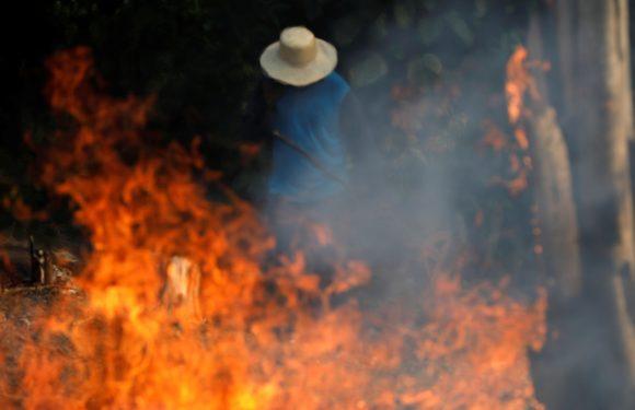Fermare il fuoco in Amazzonia!