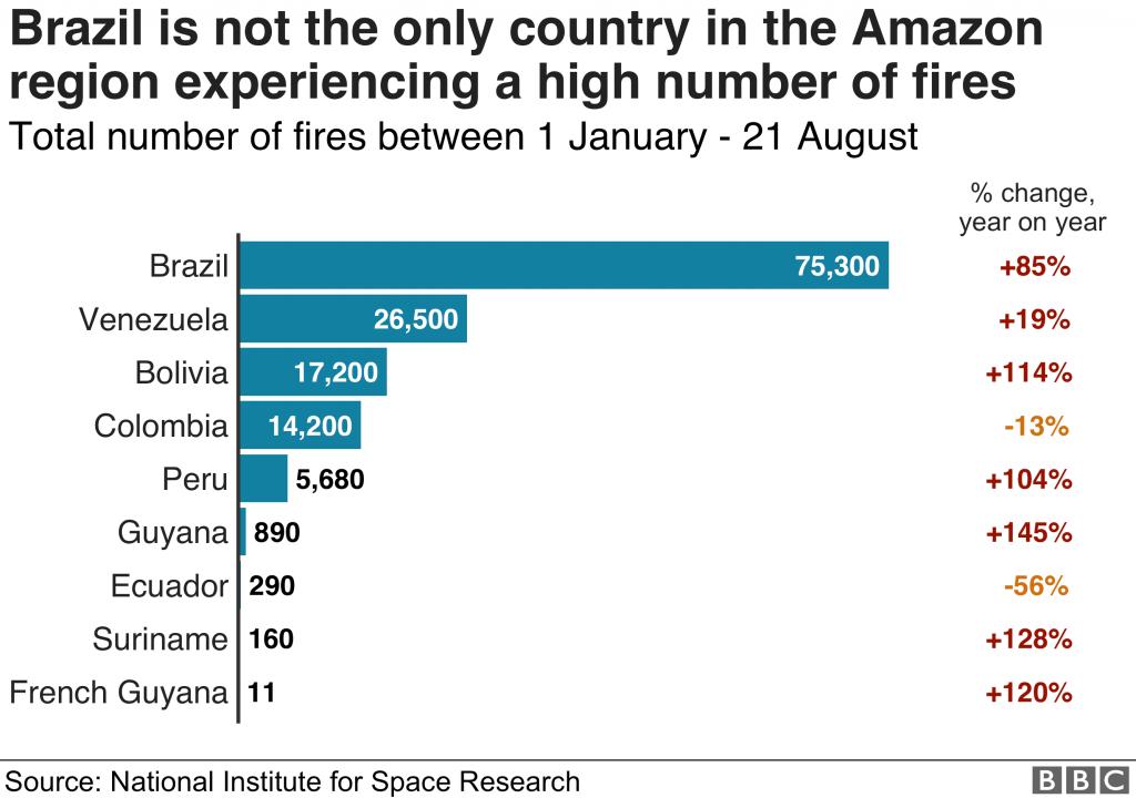 brasile, amazzonia, incendi, sud america, bolsonaro