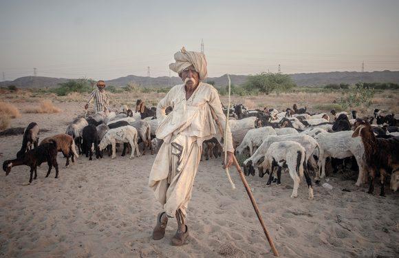 Nella terra delle grandi dighe dell'India, dove avanza il deserto