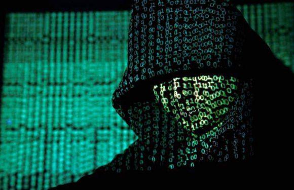 L'hacker antisistema che vuole portare la lotta di classe online