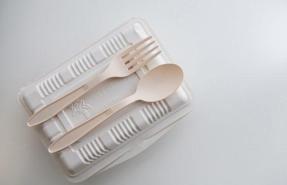 L'universo delle bioplastiche: la sfida del riciclo e dell'usa-e-getta