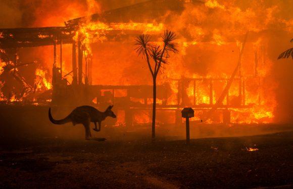 Australia in fiamme: è questa la nuova era climatica