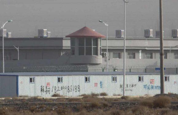 """Cina, """"Arrestano persone senza alcun motivo"""". Nuovi documenti confermano la repressione della minoranza uigura"""