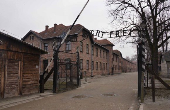 Come l'account Twitter dell'Auschwitz Memorial è diventato il fact-checker sull'Olocausto più seguito online
