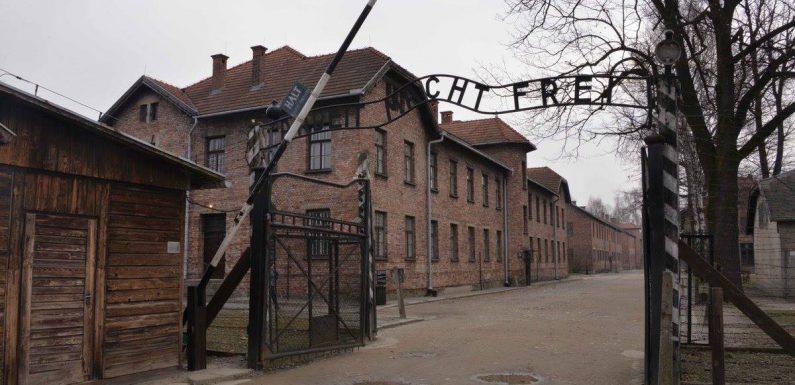 Come l'account Twitter dell'Auschwitz Memorial è diventato il fact-checker sull'Olocausto più seguito online