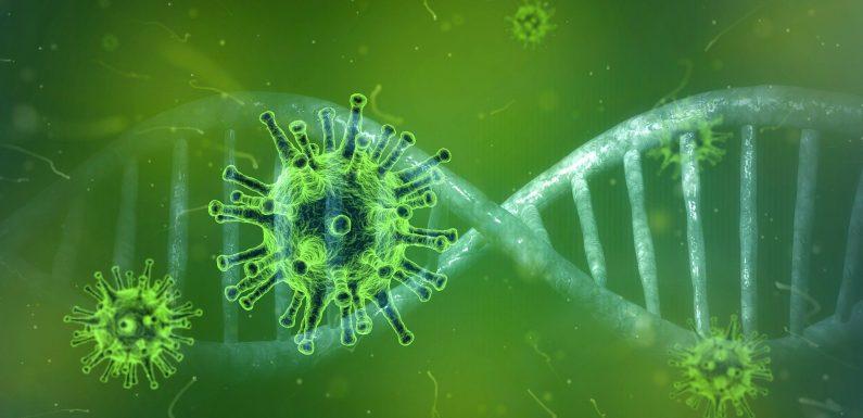 Coronavirus, è ancora troppo presto per parlare con certezza di declino della diffusione e diminuzione dei decessi