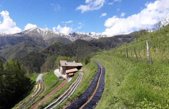 La passione di due giovani per il territorio montano in Val Trompia resiste ai danni di un incendio