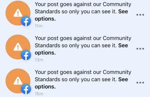 Facebook rimuove articoli sul coronavirus per errore: è un bug nel sistema anti-spam