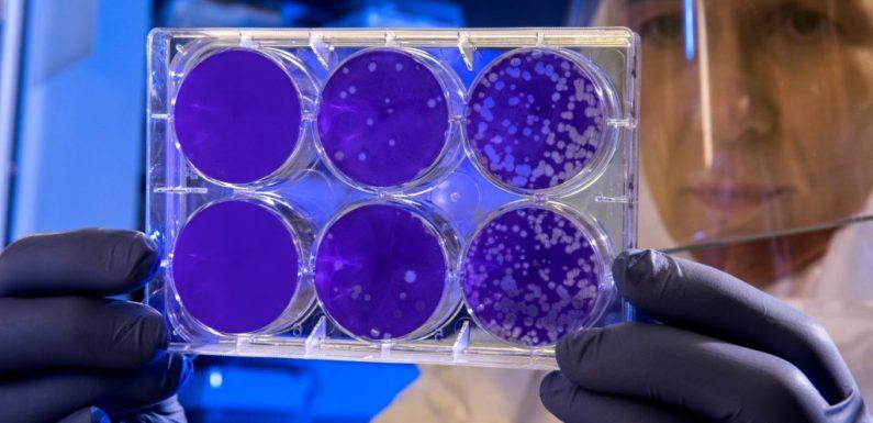 Il Coronavirus è un problema sanitario, non un nemico di una guerra misteriosa
