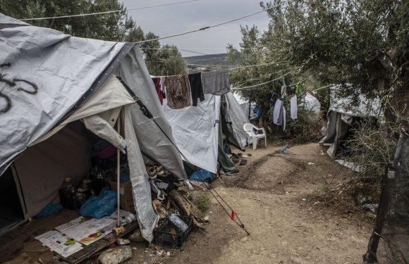 La crisi umanitaria in Grecia e il collasso del diritto d'asilo europeo erano annunciati