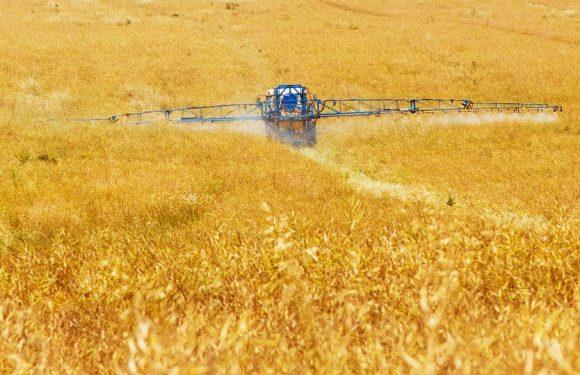 Pesticidi: l'Unione europea è in ritardo sulle alternative e manca un monitoraggio adeguato