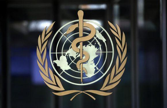 Le accuse di Trump all'Organizzazione Mondiale della Sanità e i fatti