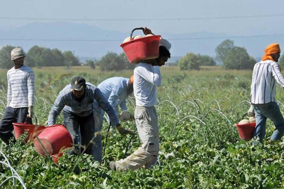 Immigrati-e-lavoro