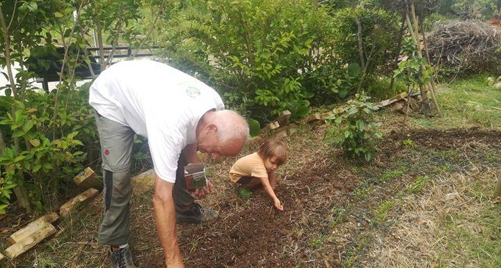 E dal cemento spuntò un orto