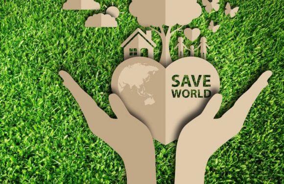 Giornata Mondiale dell'Ambiente: è ora di agire!