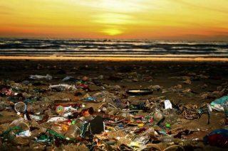 Giornata Mondiale dell'Ambiente: lo stato di salute del nostro Paese