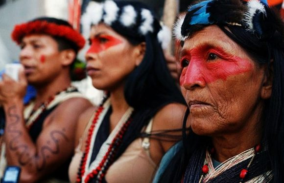 L'Amazzonia che resiste al Covid