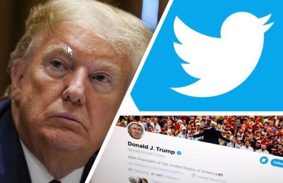 Perché su Twitter Trump sbaglia (pur avendo qualche ragione)