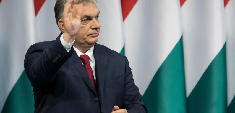 Ungheria, l'assalto di Orban a università e ricerca per creare una generazione di cittadini conservatori e nazionalisti
