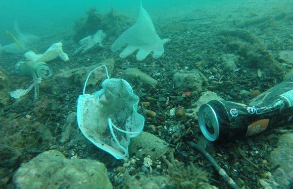 """Pandemia e inquinamento, """"Siamo a un bivio: oceani con più plastica che pesci o un modello sostenibile di vita e lavoro per un futuro più sano, equo e vivibile per tutti"""""""