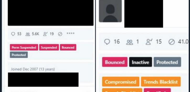 Twitter sabotato grazie all'aiuto di un dipendente della piattaforma. L'indagine di Motherboard