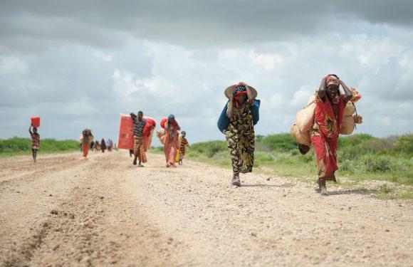 Il cambiamento climatico potrebbe costringere oltre un miliardo di persone a migrare entro il 2050