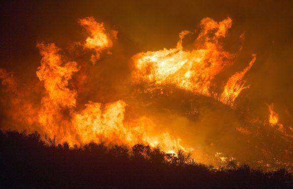 La California travolta dagli incendi: gli effetti devastanti del cambiamento climatico negli Stati Uniti