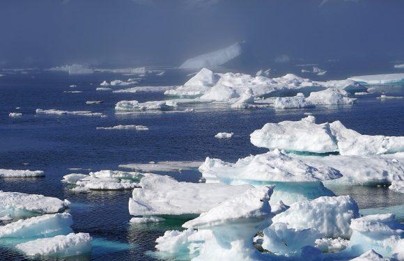 Nell'Artico è in corso un disastro al rallentatore