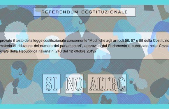 Referendumania