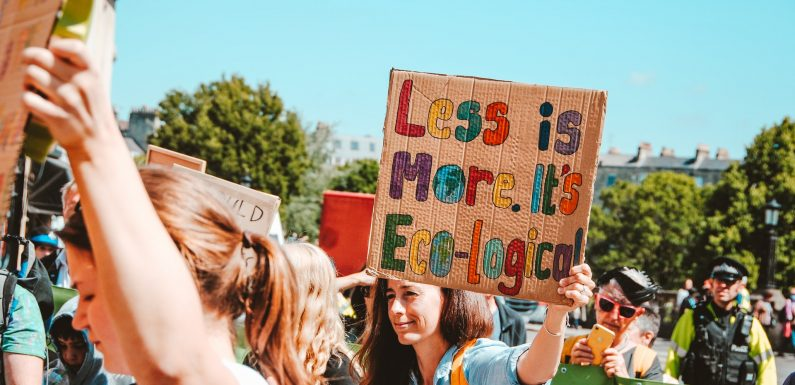 Strumenti e pratiche per una cittadinanza ecologica e globale. Il master che prepara alla transizione