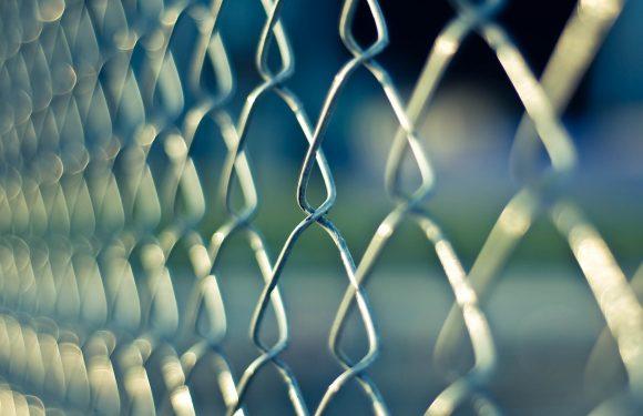 Un mondo di muri: siamo sempre più polarizzati, ma non è colpa di Internet