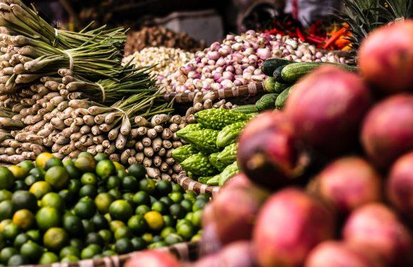 Il manuale per conoscere le politiche locali del cibo