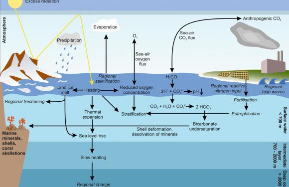 La gestione sostenibile degli oceani è fondamentale nella lotta al cambiamento climatico