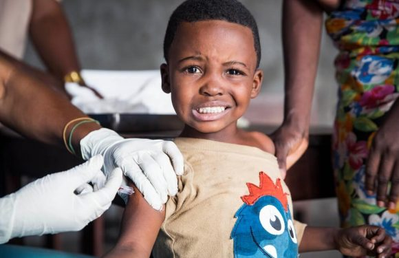 Febbre gialla: dosi ridotte del vaccino possono salvare più vite durante le epidemie